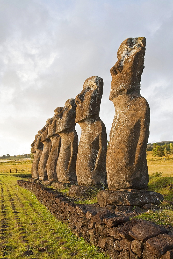 The seven moais (restored in 1960 by archaeologist William Mulloy) of Ahu Akivi are the only moai to face the ocean, Rapa Nui (Easter Island), Chile