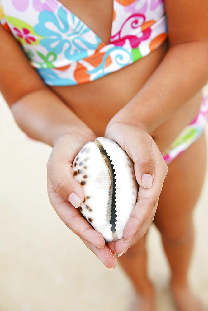 Hawaii, Oahu, Young girl holding a sea Cowry Shell.