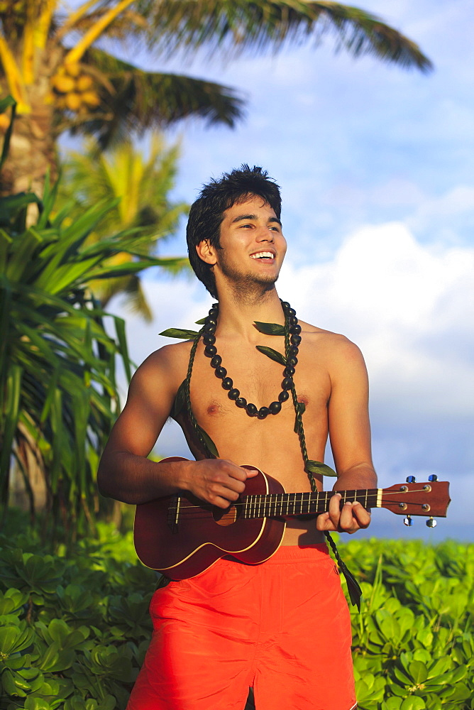 Hawaii, Oahu, Outdoor portrait of young Polynesian man playing ukulele.