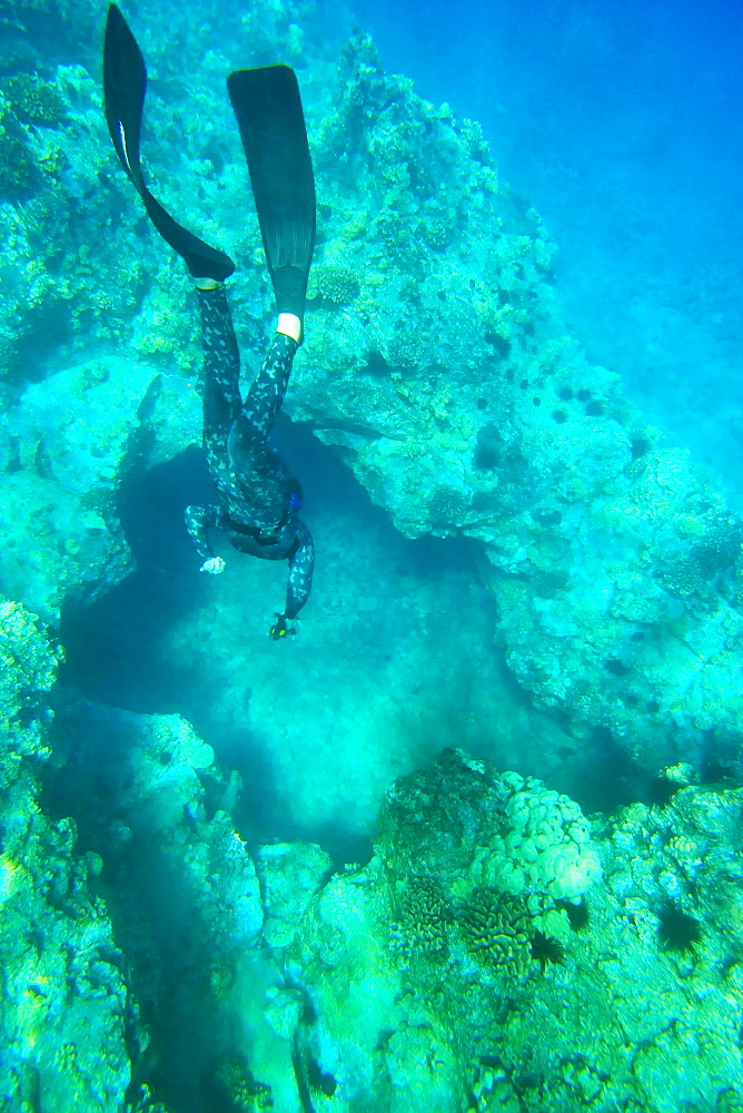 Hawaii, Maui, Makena, Spearfisher diving into hole in reef.