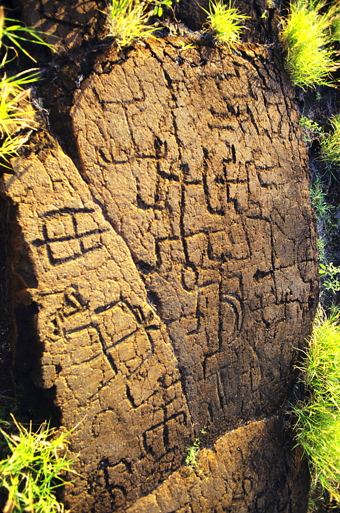 Hawaii, Big Island, Puako Petroglyph Archaeological Site, Ancient hawaiian carvings.