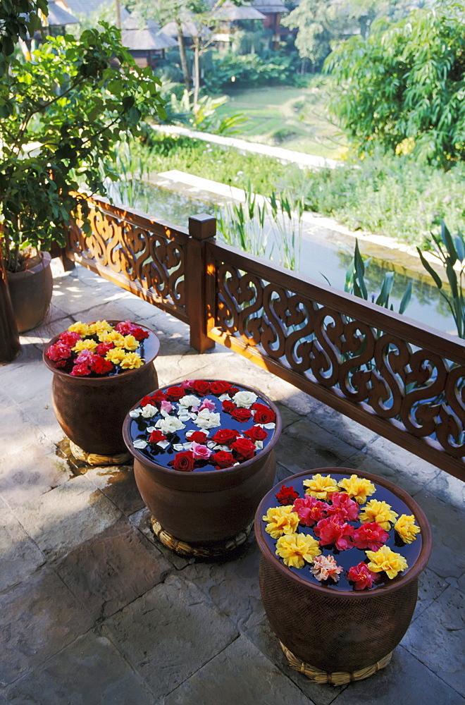 Thailand, Chiang Mai, The Regent Resort, Flowers floating in pots along walkway overlooking resort.