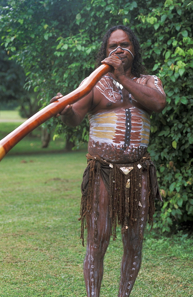 Australia, Queensland, Cairns,  Aboriginal native man playing didgeridoo, paint on body.