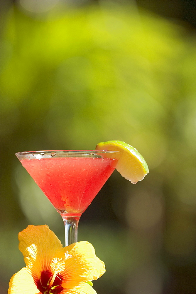 Close-up of a refreshing tropical cocktail