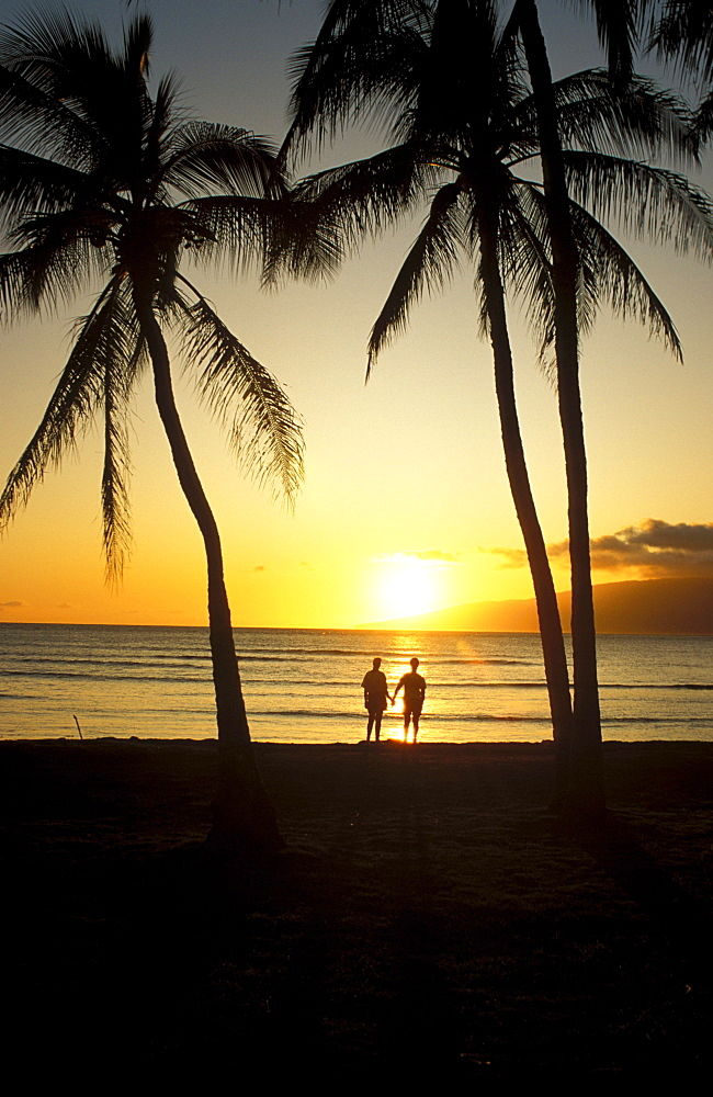 Hawaii, Maui, Couple enjoys sunset at beach, silhouette, - 1116-38015