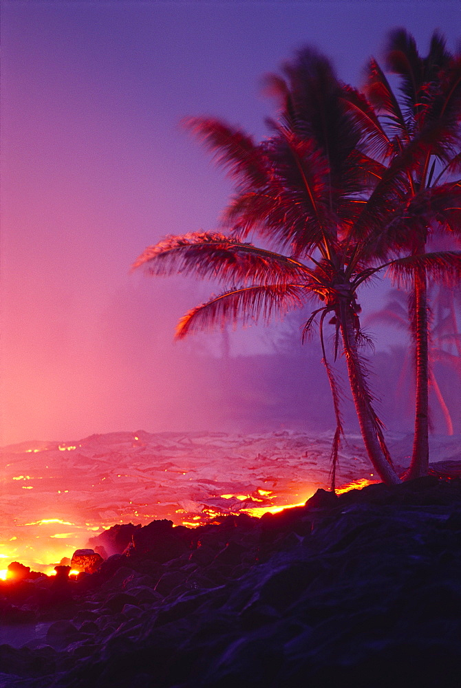 Hawaii, Big Island, Kalapana, lava flowing into ocean, palm trees, glowing A27G
