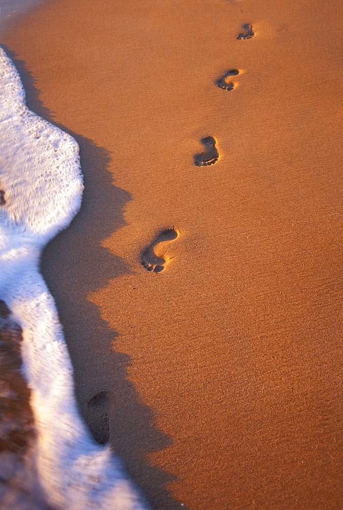 Close-up of footprints in the sand along shoreline, golden afternoon with shadows