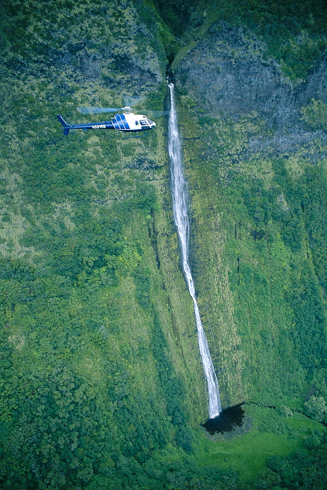 Hawaii, Big Island, Mauna Kea, helicopter in Waimanu Valley next to tall waterfall C1650