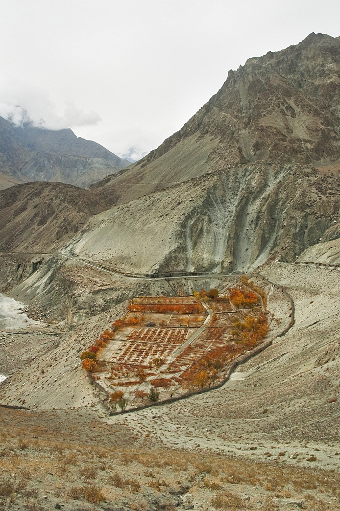 Fields On A Promontory In The Indus River Gorge, Skardu, Northern Areas, Pakistan