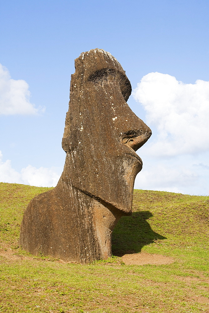 Moai By The Quarry On The Outer Slope Of The Rano Raraku Volcano, Rapa Nui (Easter Island), Chile
