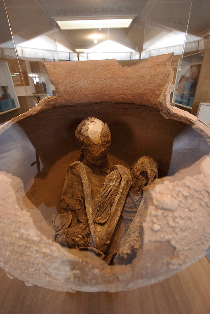 Skeleton In A Pot On Display At The Archaeological Museum R. P. Gustavo Le Paige, San Pedro De Atacama, Antofagasta Region, Chile
