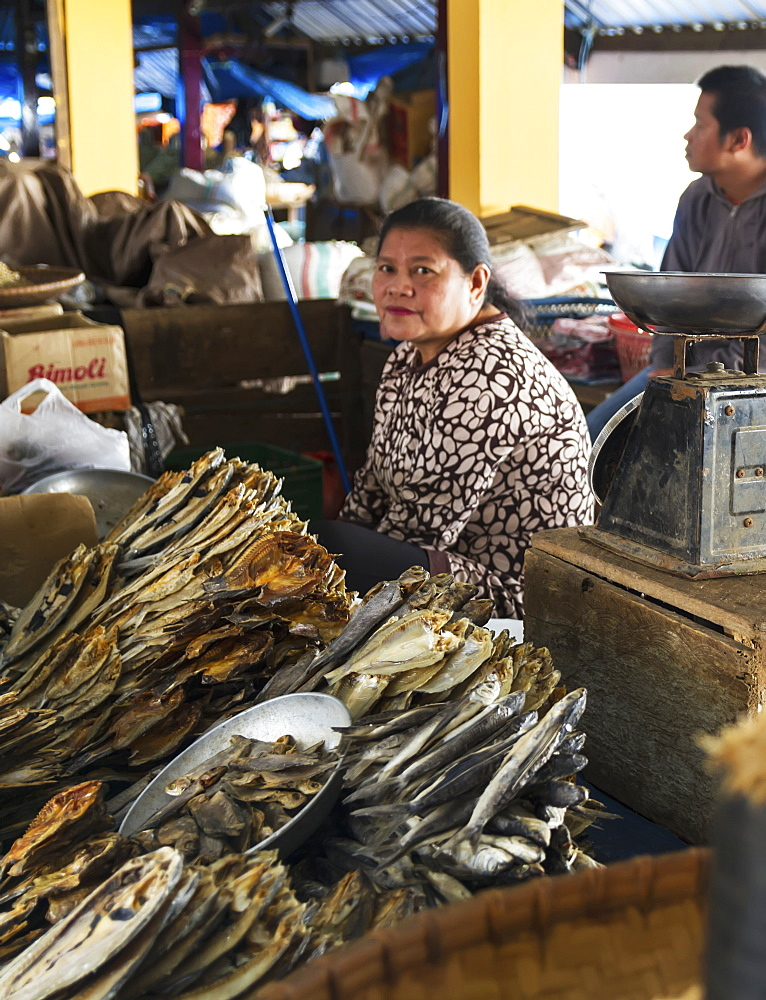 Dried fish vendor at the Bolu market, Rantepao, Toraja Land, South Sulawesi, Indonesia