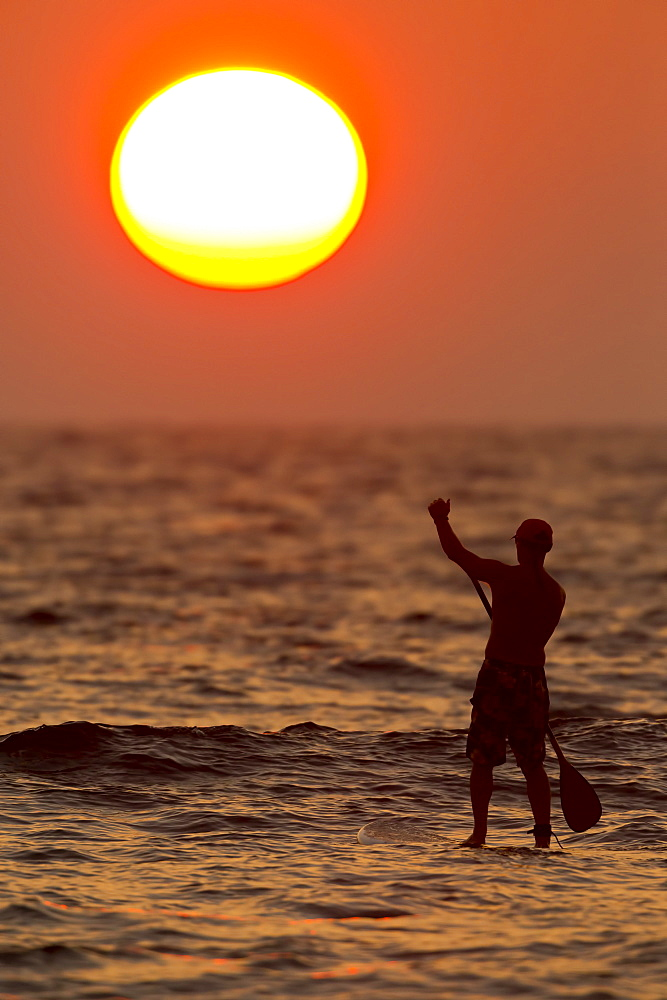 Stand up paddler at sunset, Kihei, Maui, Hawaii, United States of America