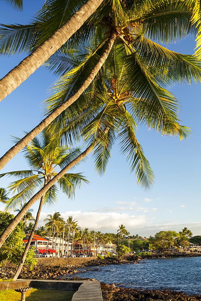 Shops along Alii Drive, Kailua Bay, Kailua-Kona, Island of Hawaii, Hawaii, United States of America