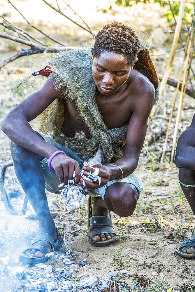 Young Hadzabe hunter wearing baboon skin cloak plucks bird killed in morning hunt and prepares to roast it over an open fire near Lake Eyasi, Tanzania