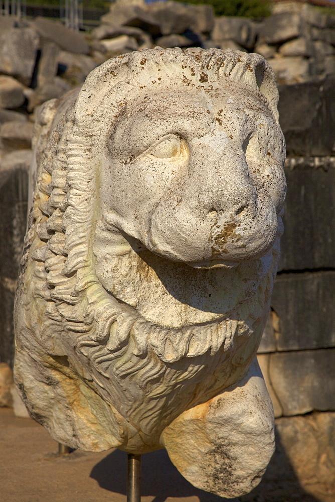 Stone lion at Temple of Apollo, Didyma, Anatolia, Turkey, Asia Minor, Eurasia