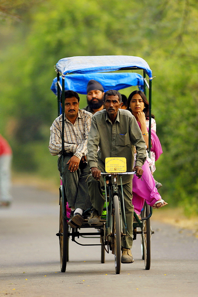 Rickshaw driver with tourists, Keoladeo Ghana national park, Bharatpur, Rajasthan, India / rickshaw