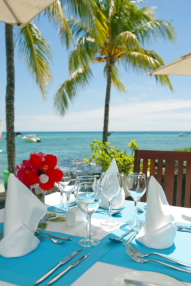 luxurios decorated lunch table with hibiscus flower under palmtree / Mauritius, Africa