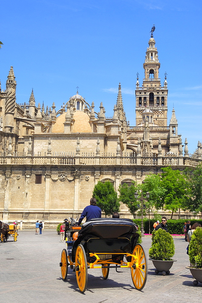 Cathedral and Giralda Tower, Sevilla( Seville), Andalusia, Spain,