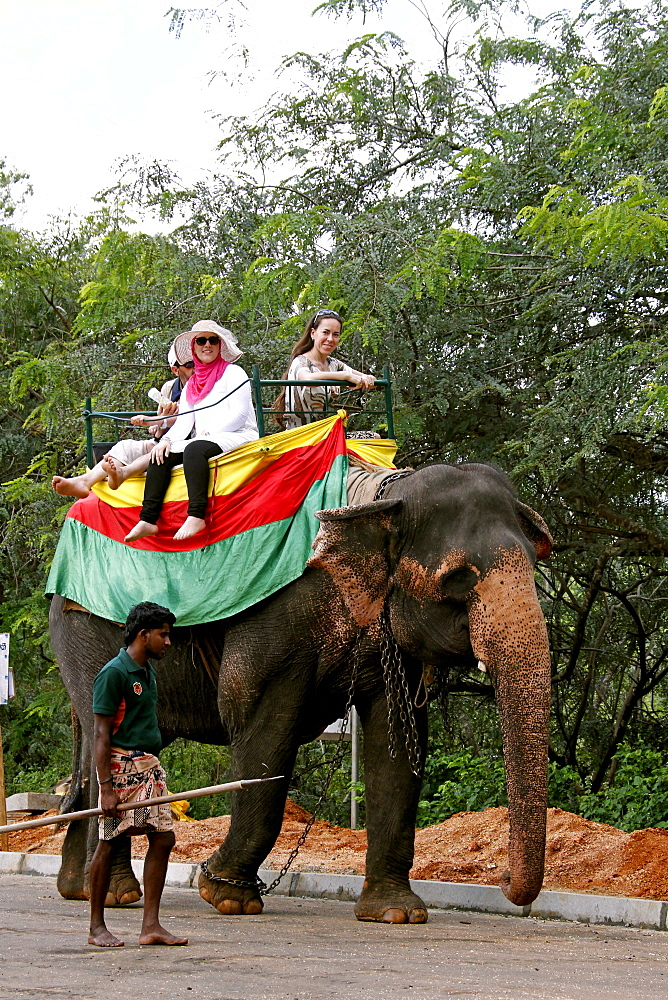 Tourists on elephant ride in lake, Sigiriya, Sri Lanka, Asia