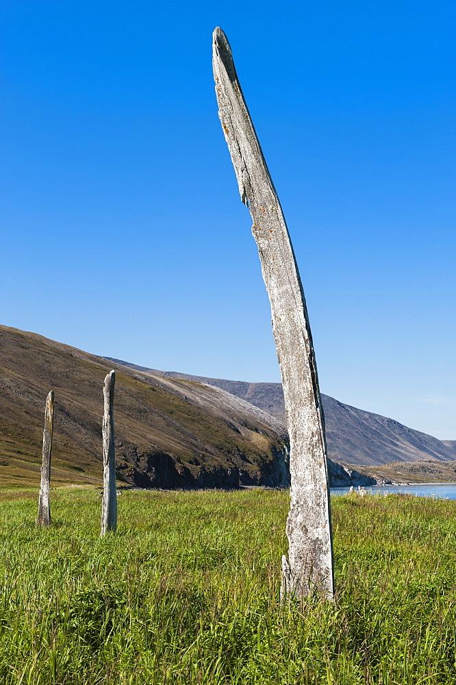Whale Bone Alley, Ittygran Island, Chukotka, Russia, Eurasia