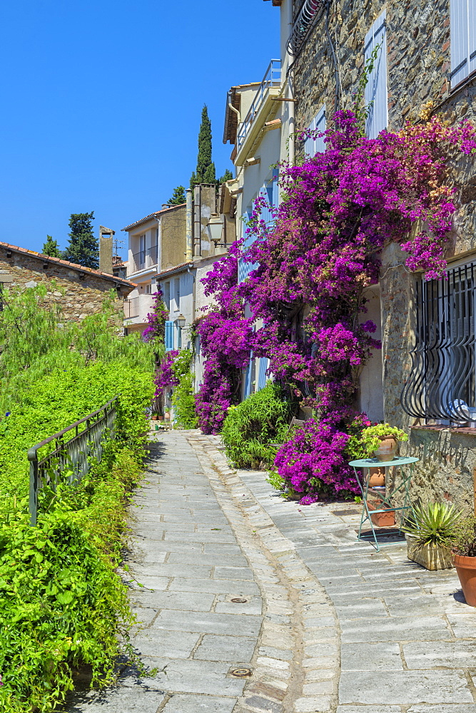 Narrow street, Grimaud Medieval village, Var, Provence Alpes Cote d'Azur region, France, Europe