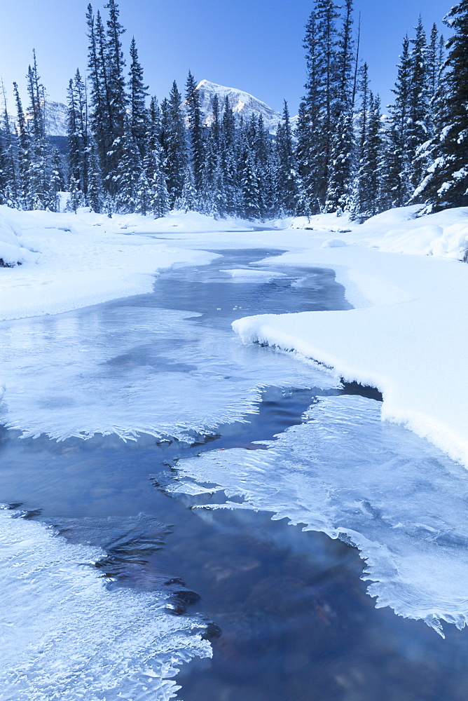 Small Stream in Winter, Banff National Park, Alberta, Canada, North America
