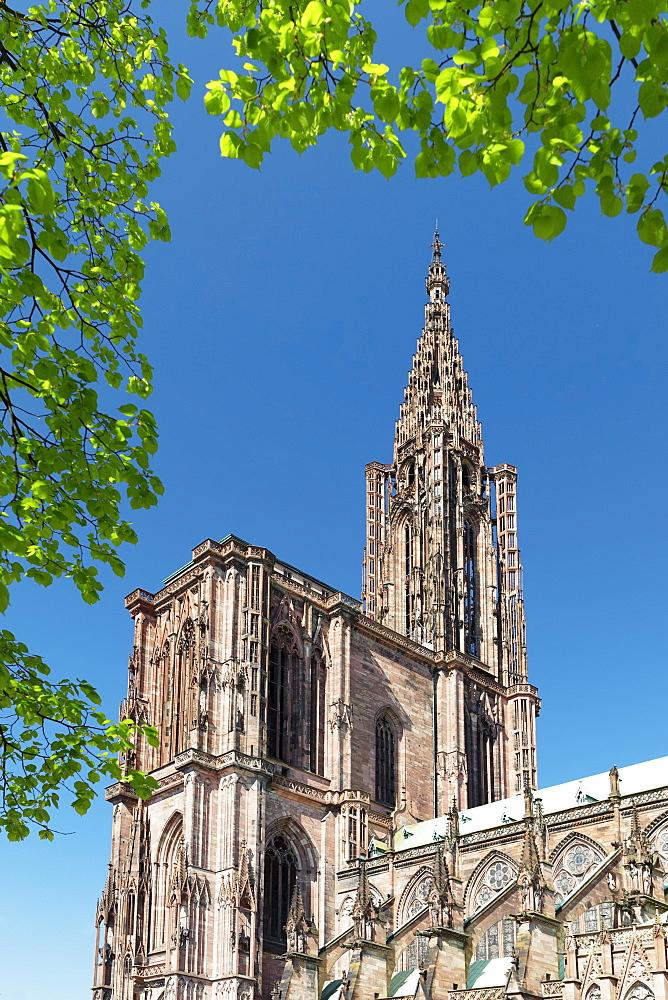 Strasbourg Cathedral Notre Dame, UNESCO World Heritage Site, Strasbourg, Alsace, France, Europe - 1160-3901
