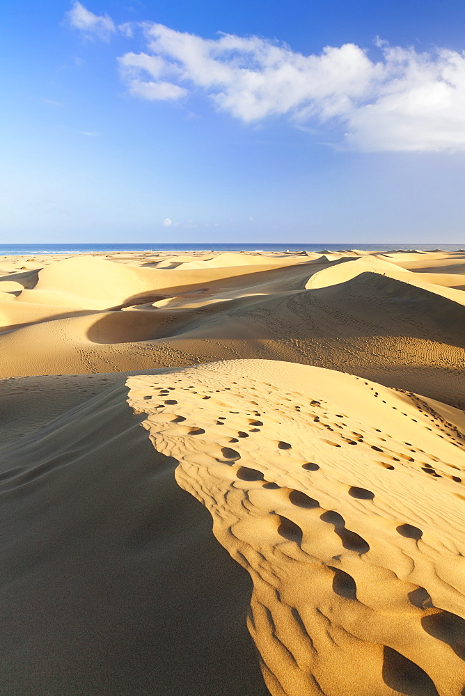 Sand dunes of Maspalomas, Maspalomas, Gran Canaria, Canary Islands, Spain, Atlantic, Europe