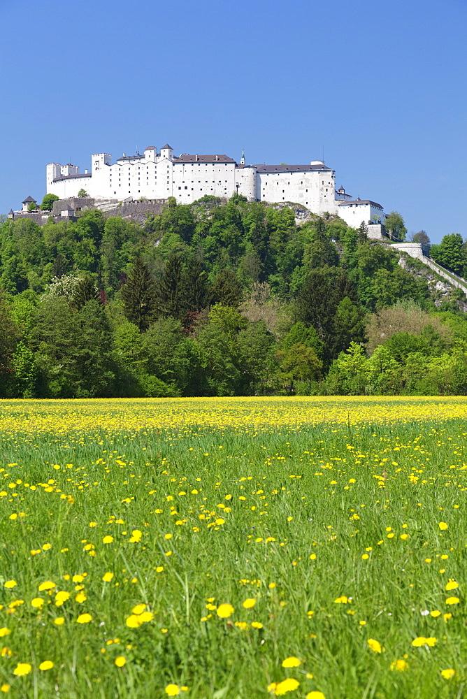 Hohensalzburg Fortress, Salzburg, Salzburger Land, Austria, Europe