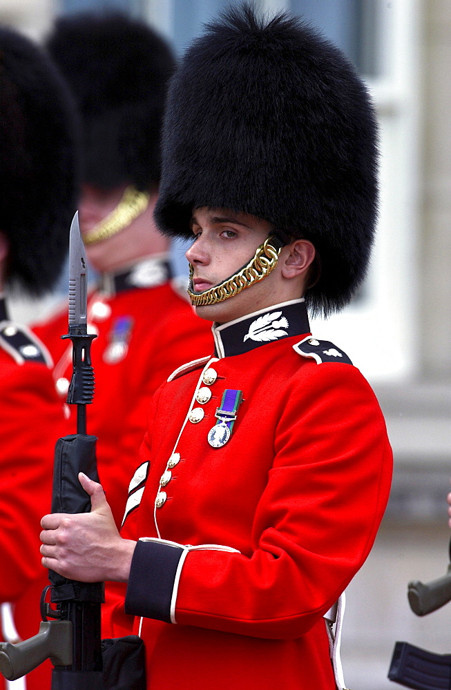 Guardsman from Household Division. Scots Guard holding a rifle with bayonet in London, UK