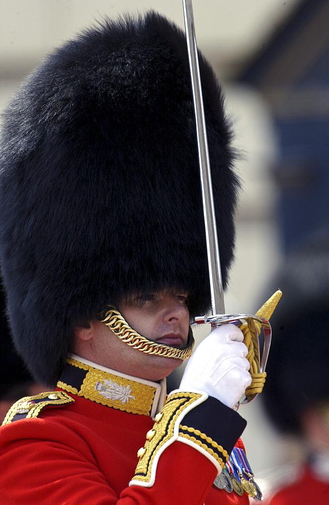 Guardsman at Military Parade, London, United Kingdom.