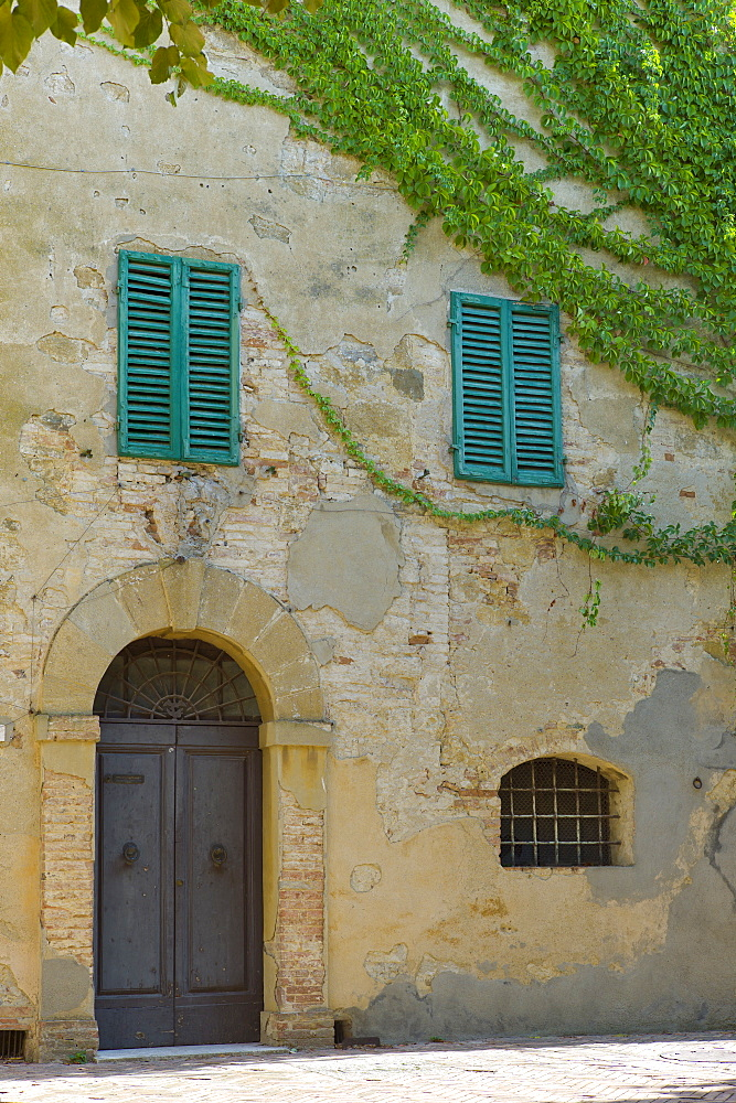 Traditional house with green window shutters and covered in Virginia Creeper, in hill town of Monticcheillo, Val D'Orcia area of Tuscany, Italy