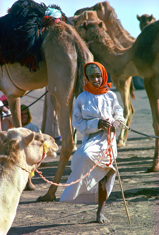 A young camel boy, wearing an arab scarf head-dress, left in charge of camels while the camel train stops for a break, is standing on one leg while resting  the other one at Al Ain, Abu Dhabi, United Arab Emirates.