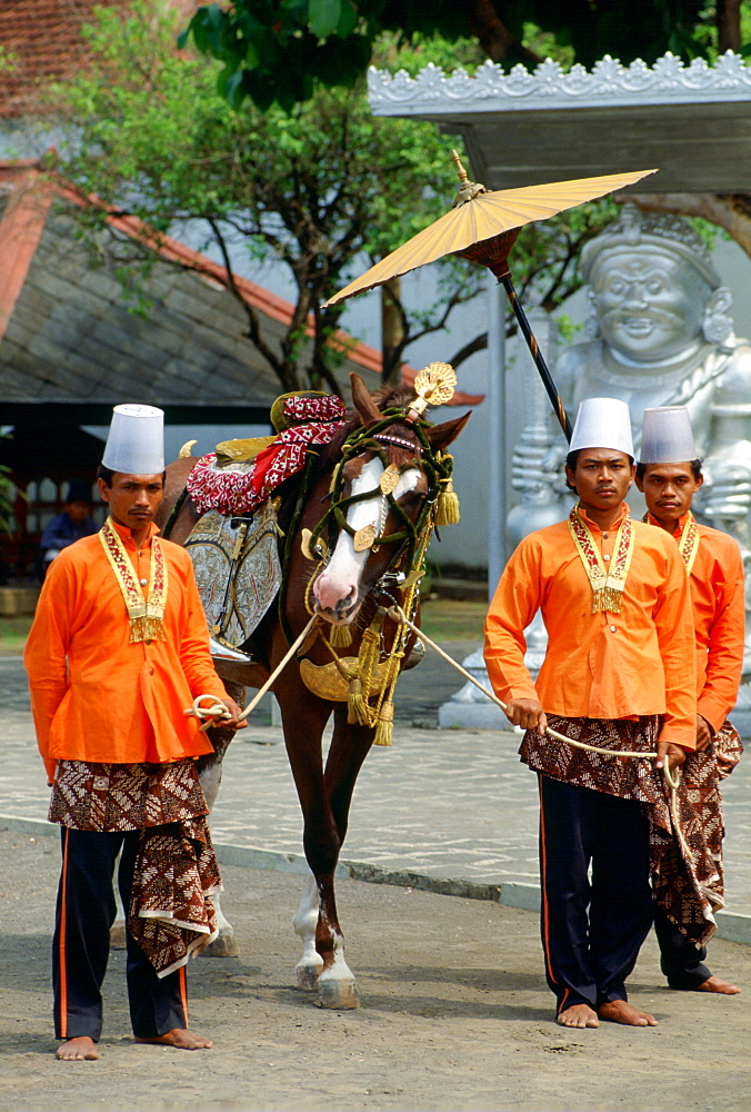 A decorated horse in  a parade at the Royal Palace in Jakarta, Indonesia