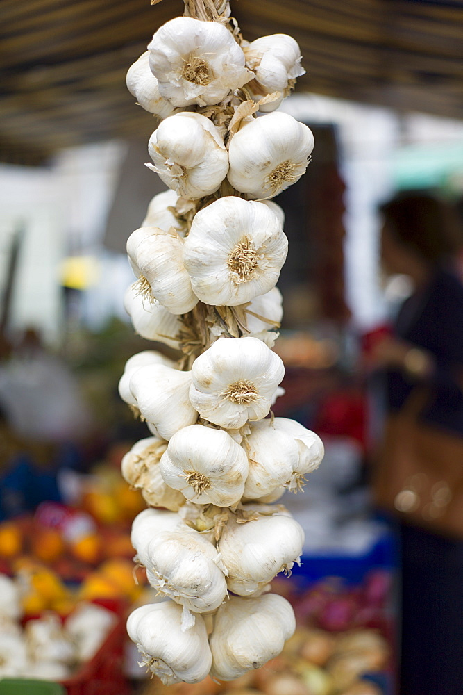Garlic plait, Allium sativum, on sale in food market in Santander, Cantabria, Northern Spain