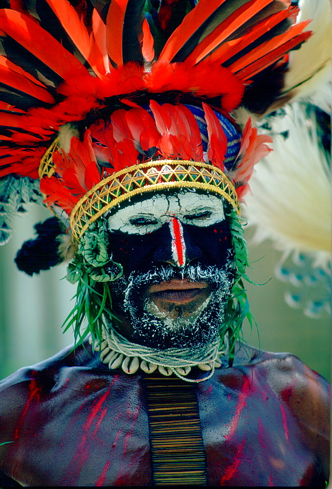 Man at Sing Sing tribal gathering  Mount Hagen, Papua New Guinea