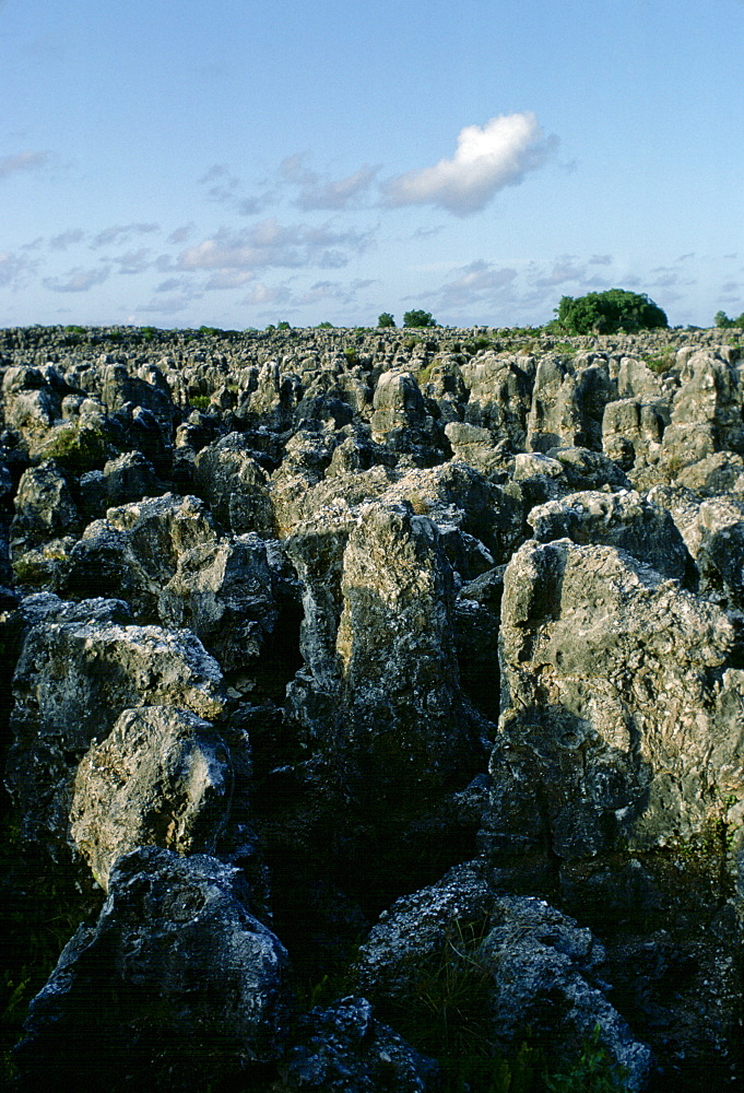 Guano bird droppings  in Nauru in the South Pacific