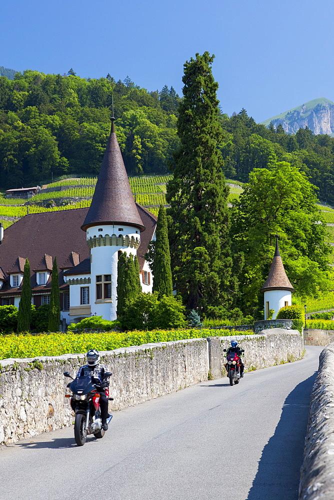 Wine estate, Chateau Maison Blanche, at Yvorne in the Chablais region, Vaud, Switzerland, Europe