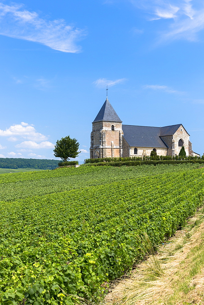 L'Eglise de Chavot, the 12th century Church of Chavot, on Tourist Route of Champagne in Marne, Champagne-Ardenne region, France, Europe