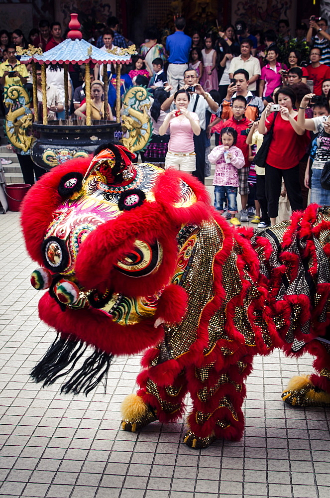A traditional lion dance during Chinese New Year celebrations, Thean Hou Temple, Kuala Lumpur, Malaysia, Southeast Asia, Asia - 1163-13