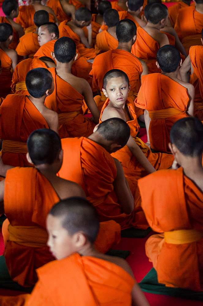 A monk looks around during his graduation ceremony, Wat Phra Singh, Chiang Mai, Thailand, Southeast Asia, Asia - 1163-39