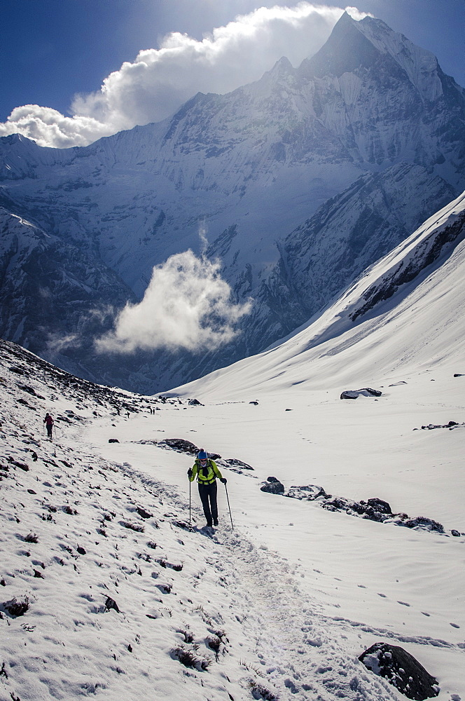 A hiker ascends the Modi Khola Valley to reach Annapurna Base Camp, 4130m, with Machhapuchhare, 6993m, in the background, Annapurna Conservation Area, Nepal, Himalayas, Asia  - 1163-81