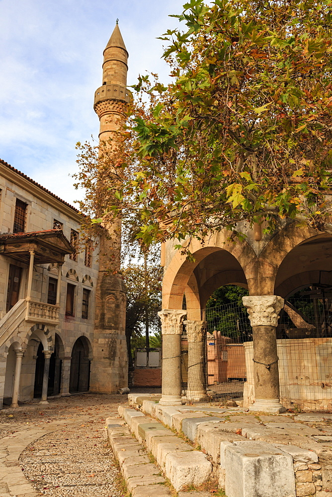 Hippocrates Plane Tree, fountain and mosque, Plateia Platanou, cobblestone square in autumn, Kos Town, Kos, Dodecanese, Greek Islands, Greece, Europe