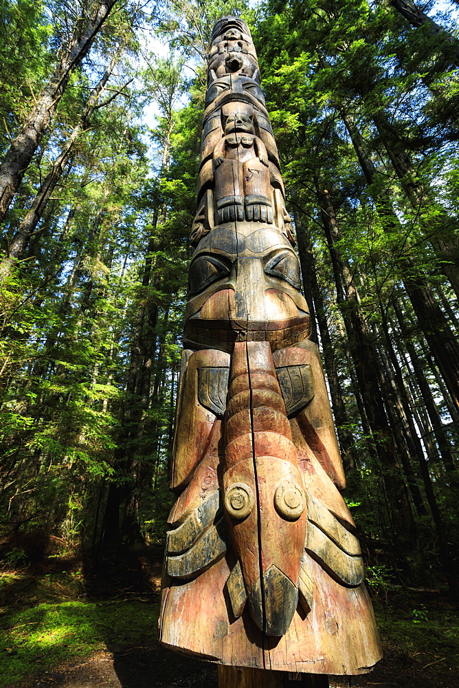 Lakich'inei Pole, Tlingit totem pole, lit by sun in rainforest, Sitka National Historic Park, Sitka, Baranof Island, Alaska, United States of America, North America