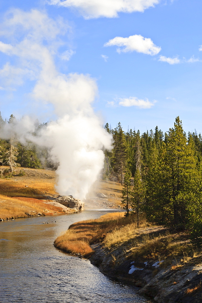 Eruption of Riverside Geyser seen from Firehole River bridge, Upper Geyser Basin, Yellowstone National Park, UNESCO World Heritage Site, Wyoming, United States of America, North America