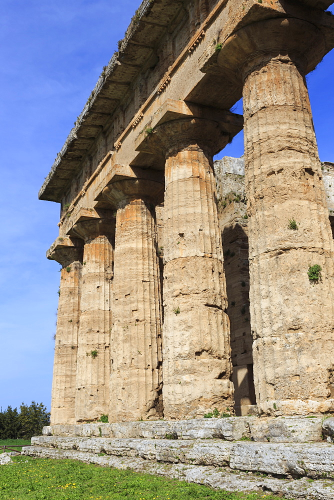 Temple of Neptune, 450 BC, largest and best preserved Greek temple at Paestum, UNESCO World Heritage Site, Campania, Italy, Europe