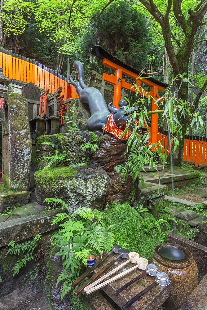 Fox water feature at a mossy Shinto shrine surrounded by thick forest in summer, Fushimi Inari Taisha, Mount Inari, Kyoto, Japan, Asia