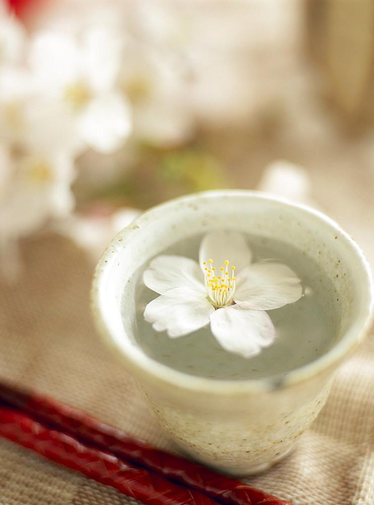 Cherry Blossom And Japanese Tea