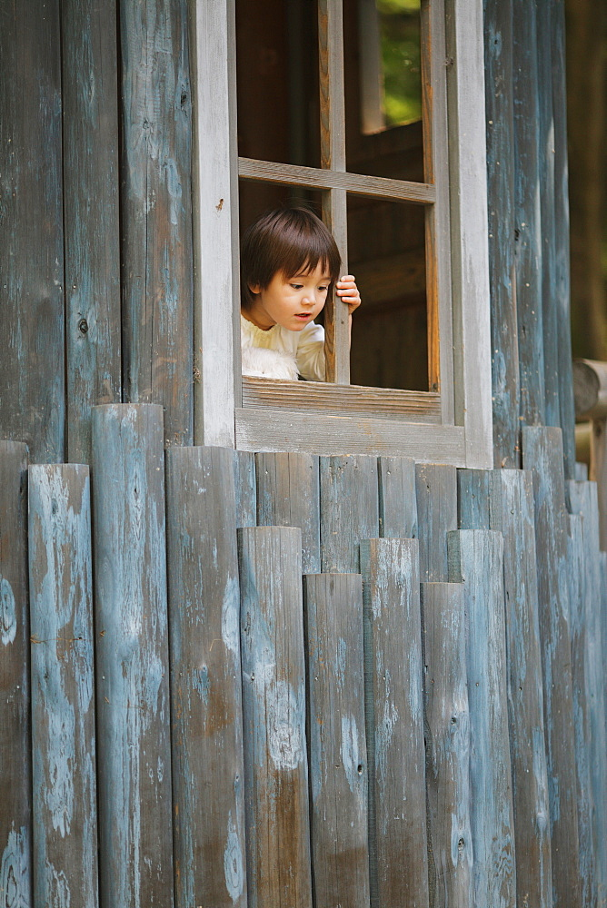 Boy Looking from Playhouse Window